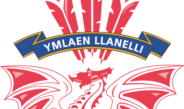 Llanelli RFC Physio Vacancy